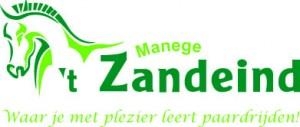 logo zandeind